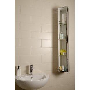 Ottawa 18 X 124.6cm Mirrored Wall Mounted Tall Bathroom Cabinet