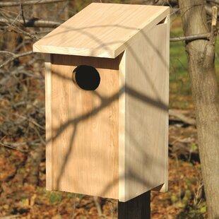 Heartwood 24.5 in x 12 in x 11 in Birdhouse