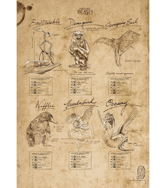 MightyPrint Fantastic Beasts and Where to Find Them 'Beasts Sketchbook'  Graphic Art Print | Wayfair