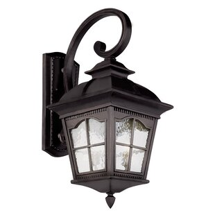 Freeborn 1-Light Outdoor Wall Lantern by ..