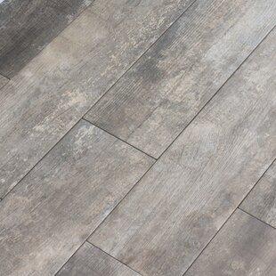 Cvine 6 X 24 Porcelain Wood Look Tile In Winder