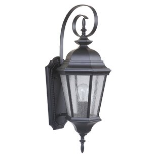 Darby Home Co Lorie Outdoor Sconce