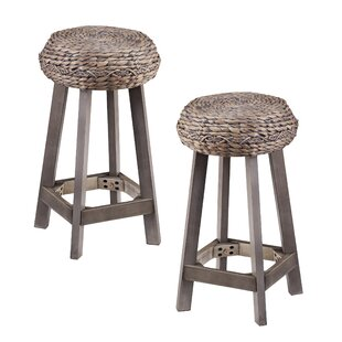 Shiena 24 Bar Stool (Set of 2)