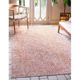 Manes Peach Indoor/Outdoor Area Rug