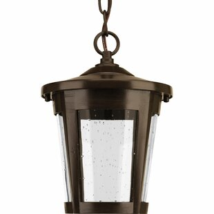 Duke 1-Light Outdoor Hanging Lantern