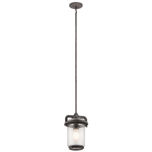 Araiza 1-Light Outdoor Pendant