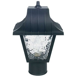 Dimaggio Glass Outdoor 1-Light Lantern Head by Winston Porter