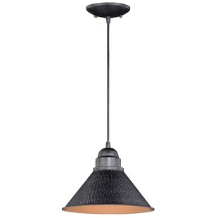 Laurel Foundry Modern Farmhouse Zuleika 1-Light Outdoor Pendant