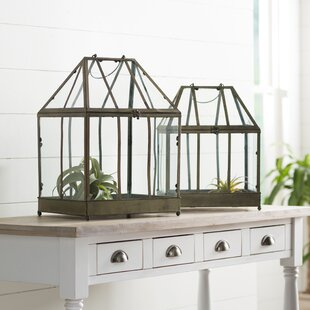 Perfect Metal Greenhouse Terrariums (Set Of 2)