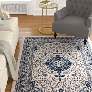 4 X 6 Area Rugs Youll Love Wayfair