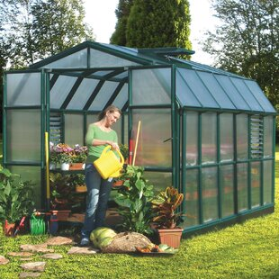 Rion Greenhouses Prestige 2 Twin Wall 8 Ft. W x 12 Ft. D Greenhouse