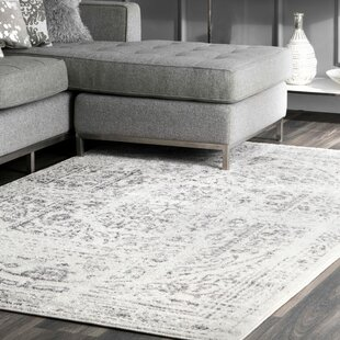 Olvera Gray Area Rug