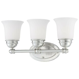 Alcott Hill Ripley 3-Light Vanity Light