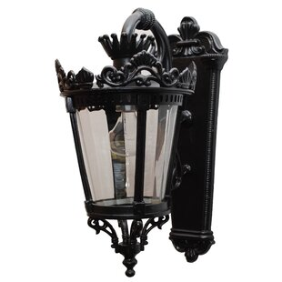 Compare Phillipstown 1-Light Outdoor Wall Lantern By Alcott Hill