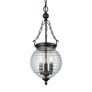 Primrose 3-Light Urn Pendant by Darby Home Co