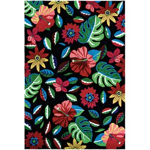 Willamette Hand-Woven Black/Green/Red Indoor/Outdoor Area Rug ByBay Isle Home