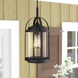 Kai-Chi 1-Light LED Outdoor Hanging Lantern
