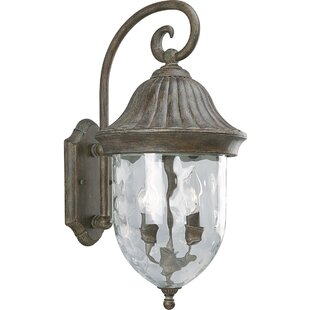Bargain Triplehorn 2-Light Outdoor Beveled Wall Lantern By Alcott Hill