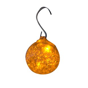 Online Reviews Aurora Glow 6-Light 25 ft. Globe String Lights By Allsop Home and Garden