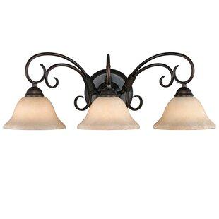 Alcott Hill Gaines 3-Light Vanity Light