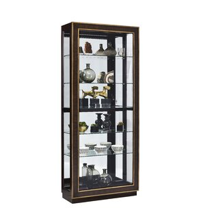 Jedediah Lighted Curio Cabinet by Bloomsbury Market