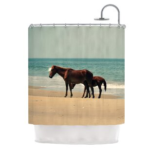 Sandy Toes by Robin Dickinson Beach Horses Single Shower Curtain