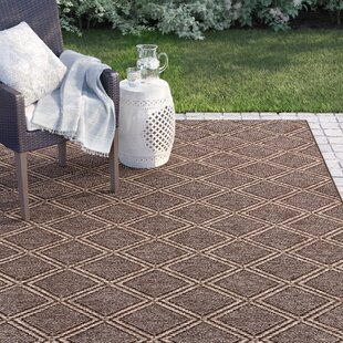Dondale Diamond Pebble/Natural Indoor/Outdoor Area Rug By Sol 72 Outdoor