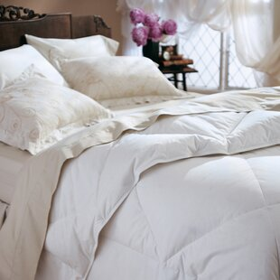 Lightweight Down Comforter by Darby Home Co