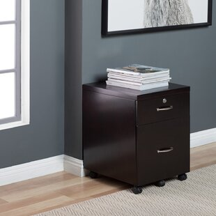 Symple Stuff Whittington Wood 2-Drawer Vertical Filing Cabinet with Lock