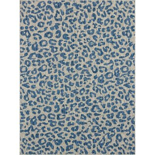 Munk Blue/Gray Indoor/Outdoor Area Rug