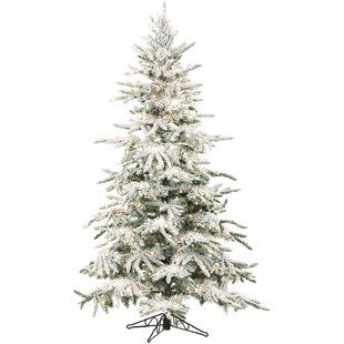 mountain pine 9 white artificial christmas tree with 800 led clear string lighting with stand and flocked branches
