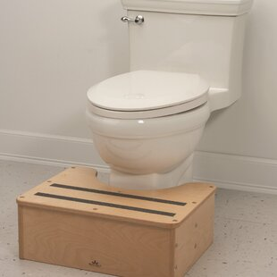 Potty Step Stool