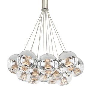 Amezquita Globes 12-Light ..