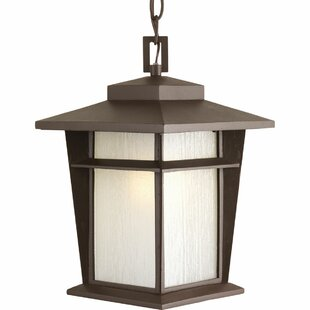 Cathrine 1-Light Hanging Lantern