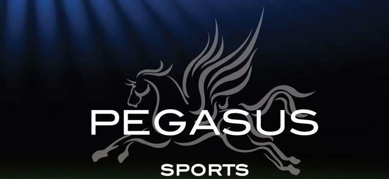 486f483bd55 Pegasus Sports   Wayfair