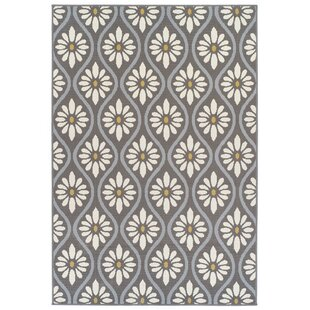 Zeil Grey Indoor Outdoor Area Rug
