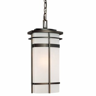 Bloomsbury Market Akilah 1-Light Outdoor Pendant