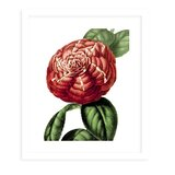 Graphic Prints And Posters Large Framed Art You Ll Love In 2021 Wayfair