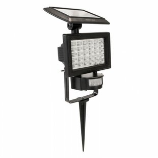 Touch of ECO 30-Light Flood Light