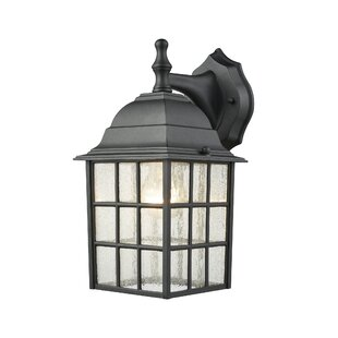 Charlton Home Kya Outdoor Wall Lantern