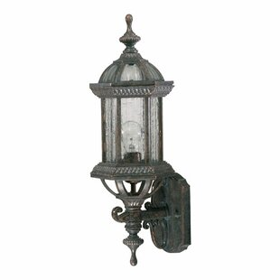 Kason 1-Light Outdoor Sconce