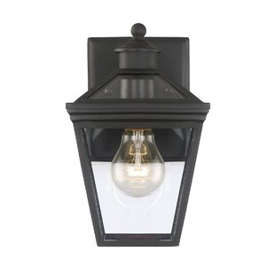 Darby Home Co Coleg 1-Light Outdoor Wall lantern