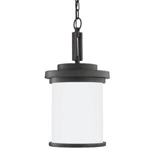 Three Posts Dashiell 1-Light Outdoor Pendant