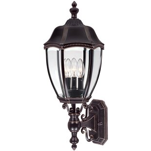 Bloomsbury Market Teri Traditional 3-Light Outdoor Wall lantern