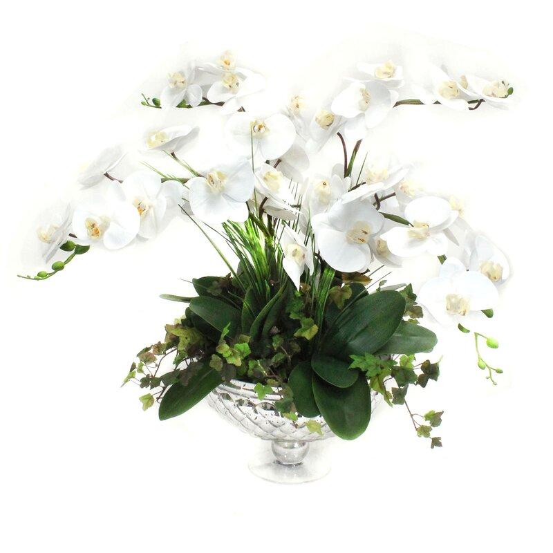 floral home decor orchid floral design wayfair.htm charlton home orchids floral arrangement in decorative vase  floral arrangement in decorative vase
