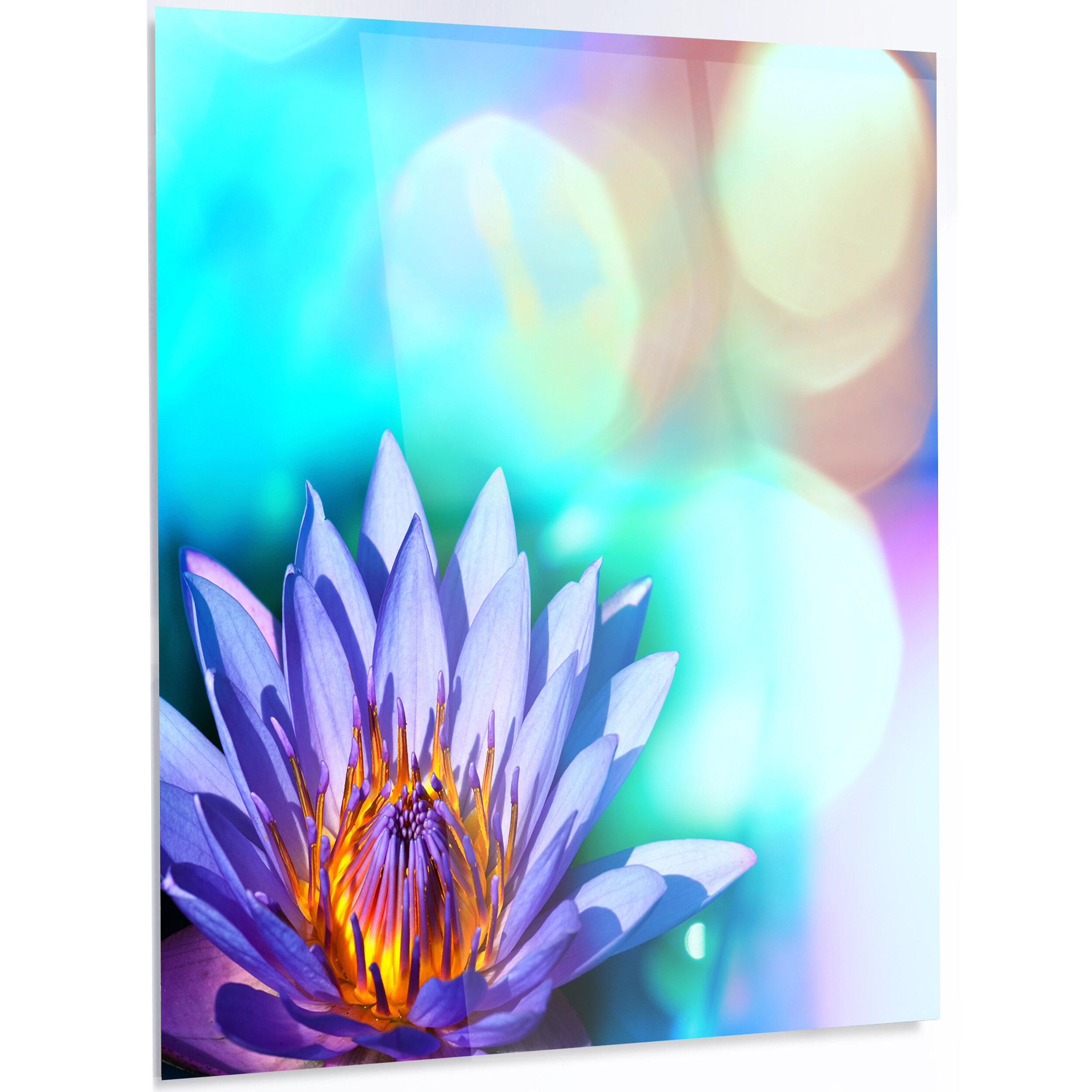 Designart Blossoming Purple Lotus Flower Photographic Print On