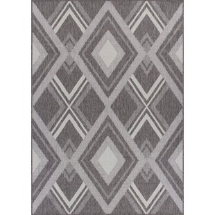 Tennyson Weather-Proof Gray Indoor/Outdoor Area Rug