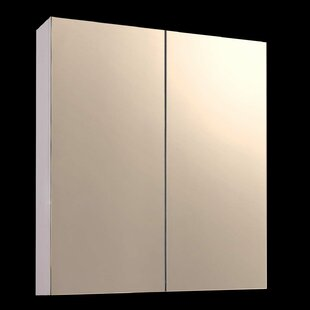 Buy luxury 24 x 42 Surface Mount Frameless Medicine Cabinet By Ketcham Medicine Cabinets