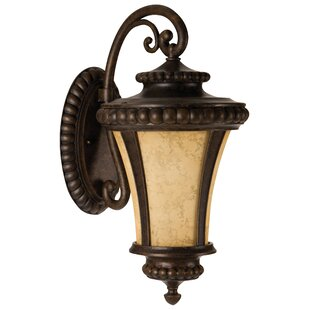 Affordable Price Oakhill Bronze Scavo Glass 1-Light Outdoor Wall Lantern By Charlton Home