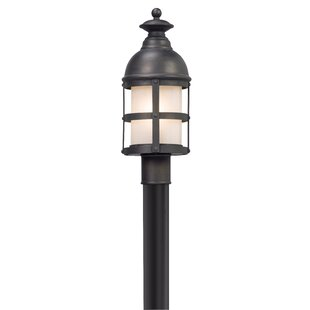 Marli Outdoor 1-Light Lantern Head by 17 Stories